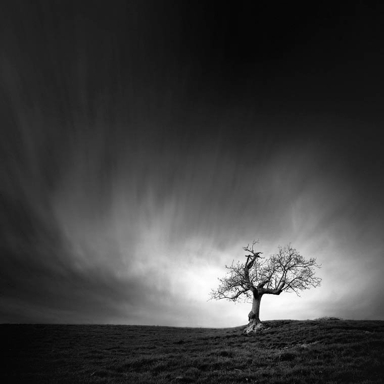 Le paysages envo tants en noir et blanc sign s andy lee for Le noir et le blanc